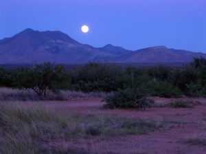 July Moonrise - 1